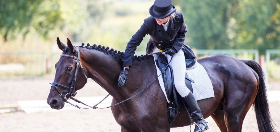 Tips to Improve Your Scores at The Next Horse Show