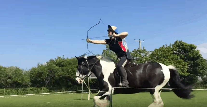 Best-Bow-for-Horses