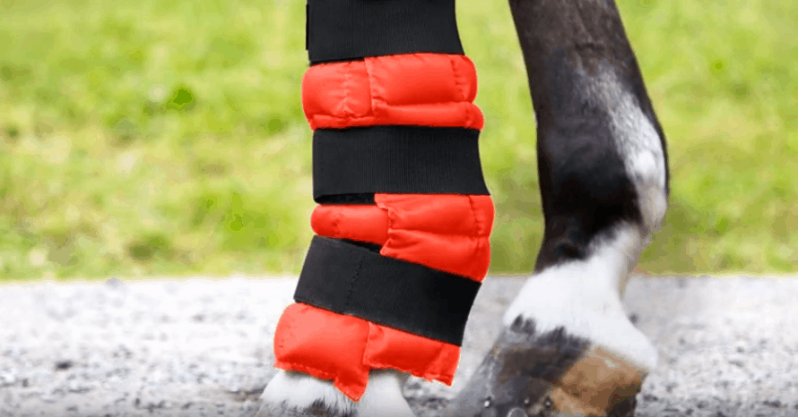 Best-Ice-Boots-for-Horses