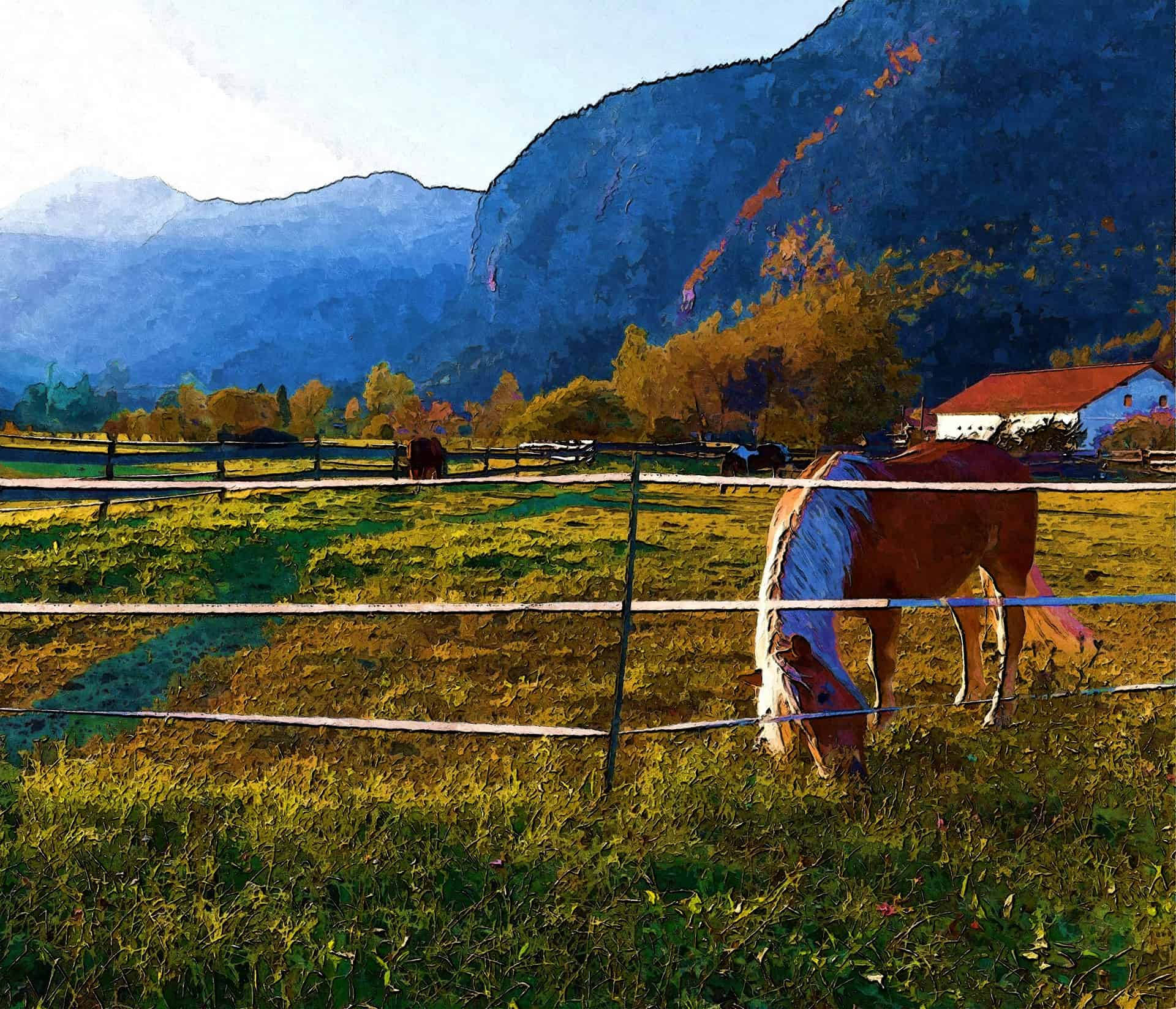 Horse-Electric-Fence-Charger