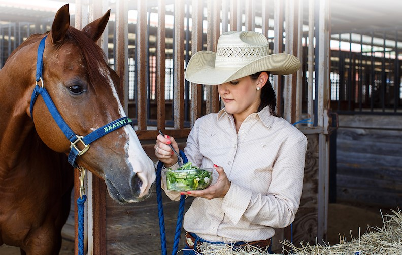 How to feed your horse Asparagus