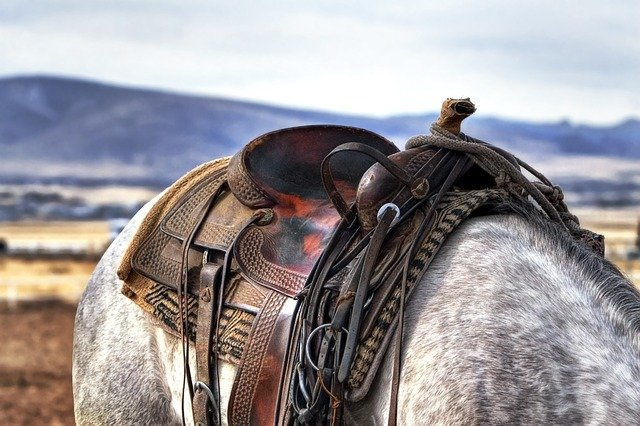 How much does a western saddle weigh